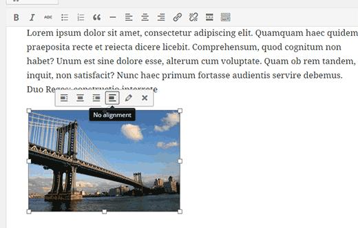 Inline image toolbar
